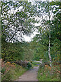 SO8074 : Bridleway near Devil's Spittleful in Worcestershire by Roger  Kidd