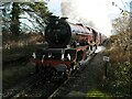 SO9548 : 46201 Princess Elizabeth, Pershore Station by Adrian Taylor