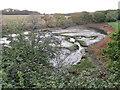 SZ5091 : Dodnor Creek nature reserve, near Newport by Malc McDonald