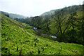 NZ0803 : Throstle Gill by Andy Waddington