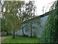 SE2534 : Retaining wall with birch trees by Stephen Craven