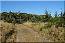 NJ4749 : Glacks of Balloch by Anne Burgess