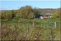 NJ4947 : Hallgreen Farm by Anne Burgess