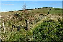 NJ5145 : Drainage Ditch by Anne Burgess