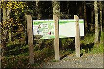 NJ5041 : Information Board by Anne Burgess