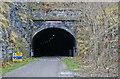 SK1772 : Monsal Trail - Cressbrook Tunnel by Chris Allen