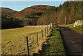 NT9616 : Road to Linhope by Derek Harper