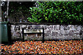 H4772 : Fallen leaves on the footpath along Donaghanie Road by Kenneth  Allen