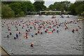 SP4408 : Openwater swimmers, Eynsham Lock by N Chadwick