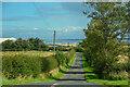 NU0739 : Kyloe : Country Road by Lewis Clarke