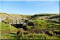SD7994 : Scars Gill footbridge by Andy Waddington