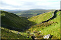 SD8094 : Afforestation in Keld Gill by Andy Waddington