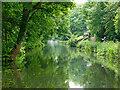 SJ8900 : Canal near Newbridge in Wolverhampton by Roger  Kidd