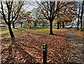 SP3479 : Gosford Green Park in Coventry by Mat Fascione