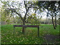 SO8855 : Trotshill Community Orchard by Chris Allen