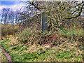 SD7906 : Springwater Park Monolinth by David Dixon