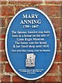 SY3492 : Lyme Regis - Mary Anning by Colin Smith