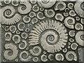 SY3492 : Lyme Regis - Coade Stone Ammonites by Colin Smith