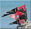 SY3391 : Lyme Regis - Marker Flags by Colin Smith