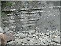SY3492 : Lyme Regis - Jurassic Coast by Colin Smith