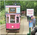 SY2594 : Colyton - Seaton Tramway by Colin Smith