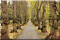 SK8052 : London Road Cemetery by Richard Croft