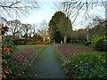 SE2039 : Millennium Garden, Micklefield Park by Stephen Craven