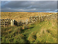 SE0255 : Eastby Gate from the South by Chris Heaton