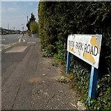 SZ0796 : Kinson: Kinson Park Road by Chris Downer