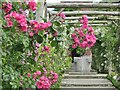 TQ1352 : Polesden Lacey - Rose Garden by Colin Smith