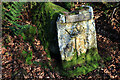NY9085 : Roman rock carving: 'Robin of Risingham' by Andrew Curtis