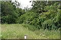SU9179 : Footpath signpost by N Chadwick