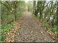 SK3621 : Embankment, Dimsdale branch, Ticknall tramway by Christine Johnstone