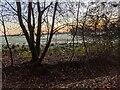 TF0821 : Woodland edge by Bob Harvey