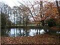 TQ6940 : Pond at Sprivers by Marathon
