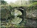 SK3623 : Bridge between two flooded quarries, Ticknall limeyards by Christine Johnstone