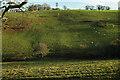 SX8854 : Valley, Combe Lane by Derek Harper