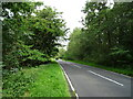 SE0997 : B6270 beside Stainton Low Wood by JThomas