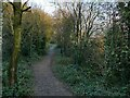 SE2232 : Railway path north-east from Radcliffe Lane  by Stephen Craven