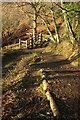SX7290 : Path junction near Castle Drogo by Derek Harper