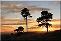 NT5036 : A Blaikie's Hill sunset by Walter Baxter