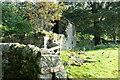 NY7545 : Ruin by the river by Bob Harvey