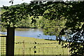 TQ6327 : Wadhurst Park Lake by N Chadwick