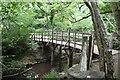 TQ4733 : Pooh Sticks Bridge by N Chadwick