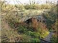 SK6340 : Footpath under the bridge by Alan Murray-Rust