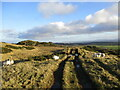 NS9871 : Track on Cairnpapple Hill by Alan O'Dowd