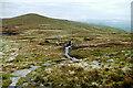 NY6933 : Pennine Way to Crowdundle Head by Andy Waddington