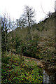 NZ4239 : Castle Eden Burn flows below Castle Bridge by Andy Waddington