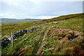 SD8686 : Bridleway west of Drumaldrace by Andy Waddington