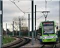 TQ3567 : Tramlink by Peter Trimming